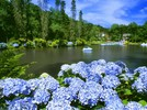 Você conhece a história do Lago Negro?