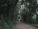 Gramado na rota turística Caminhos de Caravaggio