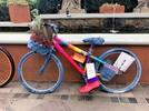 Gramado ganhou exposição de bicicletas