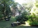 Parque das Sequóias