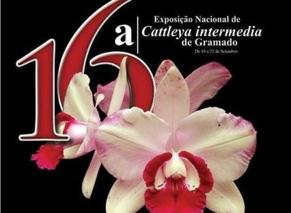 Exposição Nacional de Orquídeas de 18 a 22 de setembro