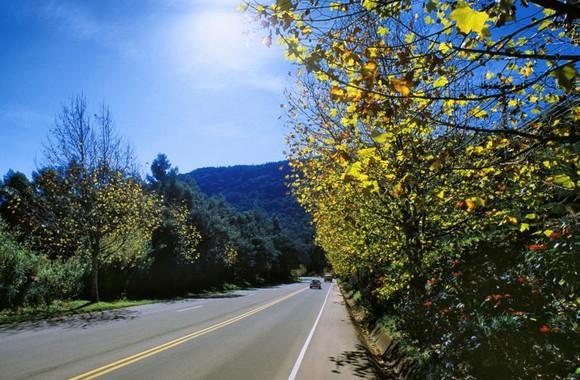 Outono em Gramado