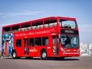 Passeio Bus Tour
