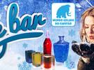 Ice Bar Parque Mundo Gelado