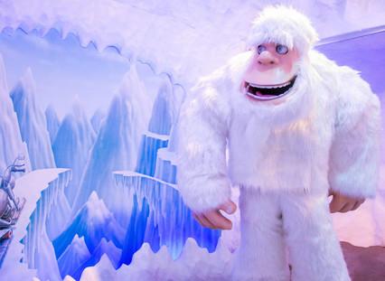 Snowland cavernayeti